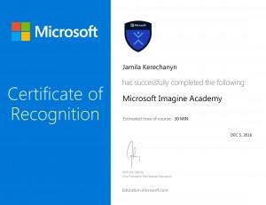 Microsoft Imagine Academy -1